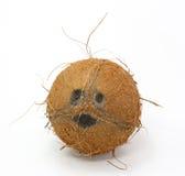 Het glimlachen van kokosnoot op wit stock foto's