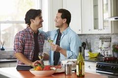 Het glimlachen van mannelijke vrolijke paar het drinken wijn terwijl het voorbereiden van een maaltijd stock fotografie