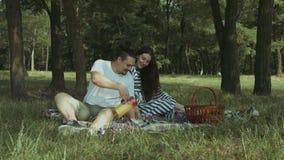 Het glimlachen van mensen gietend sap in glazen op picknick stock videobeelden