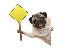 Het glimlachen van pug puppyhond die lege gele waarschuwing, aandachtsteken steunen Royalty-vrije Stock Foto's