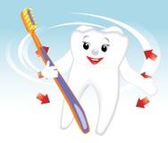 Het glimlachen van tand met tandenborstel. Beeldverhaal Royalty-vrije Stock Afbeelding