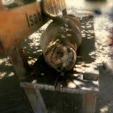 Het glimlachen van zeeleeuw in Puerto Villamil royalty-vrije stock fotografie