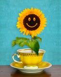 Het glimlachen van zonnebloem in een kop Stock Afbeelding