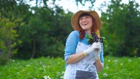 Het glimlachen het vrouwelijke tuinman stellen met courgetteinstallaties en het bekijken camera, de landbouw en het tuinieren con stock video