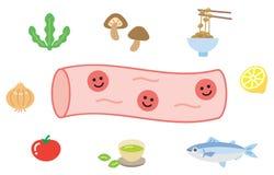 Het glimlachende karakter van de beeldverhaal leuke gezonde slagader en het voedend-rijkenvoedsel omvatten vruchten en groenten H royalty-vrije illustratie