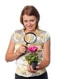 Het glimlachende meisje denkt cyclamens na royalty-vrije stock fotografie