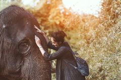 Het glimlachende meisje omhelst een olifant Royalty-vrije Stock Foto