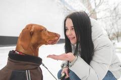 Het glimlachende meisje op de straat voedt een mooie bruine sabelmarter van haar hand, de hondglimlachen royalty-vrije stock foto