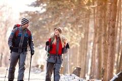 Het glimlachende paar geniet van terwijl wandeling in aard Royalty-vrije Stock Foto