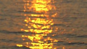 Het glinsteren en flikkerende gouden oceaan, overzeese oppervlakte bij zonsondergang over tropisch strand, zonsopgang of schemeri stock videobeelden