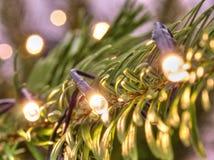 Het gloeien de lichten van Kerstmis Kerstboom met slingers wordt verfraaid die royalty-vrije stock afbeeldingen