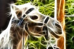Het gloeien Kameel Stock Afbeeldingen