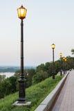 Het gloeien lichten in het park Royalty-vrije Stock Fotografie