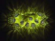 Het gloeien Ramadan van de de vakantiedecoratie van de groene lichtenslinger de Islamitische stock foto
