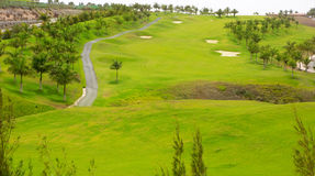 Het golf groen gras van Gran Canaria Meloneras Stock Foto