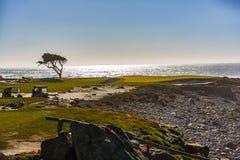 Het Golf van het kiezelsteenstrand Stock Afbeeldingen