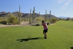 Het golfcursus van Arizona van de golfschommeling stock afbeeldingen