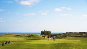 Het golfcursus van golfkarren ot stock fotografie