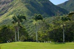 Het golfcursus van Hawaï Royalty-vrije Stock Afbeelding