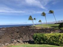 Het golfcursus Waikoloa Hawaï van het koningenstrand royalty-vrije stock fotografie