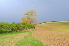 Het golvende landschap van de fairytalelente met gebieden en hemel Het landschap van de lente Moravian Toscanië, Zuid-Moravië, Ts Royalty-vrije Stock Foto's