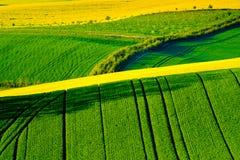 Het golvende landschap van de weidenlente in Zuid-Moravië royalty-vrije stock afbeelding