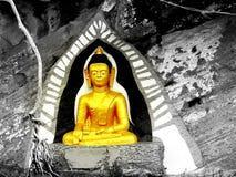 Het goud van de het standbeeldkleur van Boedha in dark stock foto