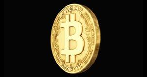 Het gouden Bitcoin-Contant geldmuntstuk spinnen in perfecte die lijn op zwarte achtergrond wordt geïsoleerd 4K video het 3d terug stock video