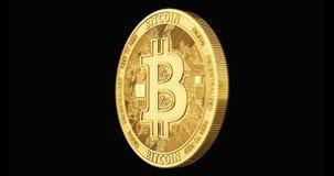 Het gouden Bitcoin-spinnen in perfecte die lijn op zwarte achtergrond wordt geïsoleerd 4K video het 3d teruggeven stock videobeelden
