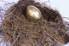 Het gouden Ei van het Nest Royalty-vrije Stock Afbeeldingen