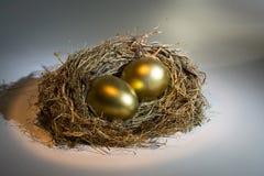 Het gouden Ei van het Nest Stock Foto