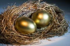 Het gouden Ei van het Nest Stock Fotografie