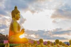 het gouden grote standbeeld van Boedha onder heel wat kleine standbeelden van Boedha Stock Afbeelding
