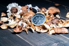 Het gouden kompas gezet op droge bladeren op houten retro zwarte tablegolden kompas gezet op droge bladeren op houten retro zwart stock fotografie
