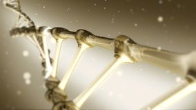 Het gouden spiraalvormige roteren van DNA stock video