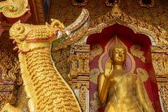 Het gouden standbeeld van Boedha in tempel Stock Fotografie
