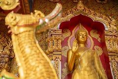 Het gouden standbeeld van Boedha in tempel Royalty-vrije Stock Afbeelding