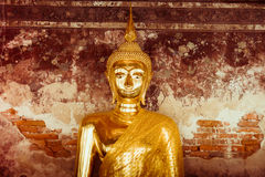 Het gouden standbeeld van Boedha - Uitstekend filtereffect Royalty-vrije Stock Afbeeldingen