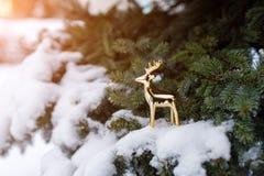 Het gouden stuk speelgoed hert bevindt zich op een sneeuwtak van altijdgroene pijnboom als symbool van de Nieuwjaarvakantie stock fotografie