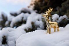 Het gouden stuk speelgoed hert bevindt zich op een sneeuwtak van altijdgroene pijnboom op blauwe hemel als achtergrond royalty-vrije stock foto