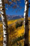 Het Gouden Uitzicht van Colorado Royalty-vrije Stock Afbeeldingen