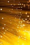 Het gouden vezeloptisch gloeien Stock Fotografie