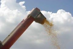 Het graan combineert royalty-vrije stock afbeelding