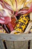Het graan van de Indiaan in een mand Stock Foto