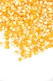 Het graan van de maïs Royalty-vrije Stock Afbeelding