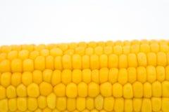 Het graan van de maïskolf Stock Foto's