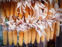 Het graan van het graanklandergraan hangt royalty-vrije stock afbeelding