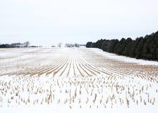 Het graangebied van Nebraska in de winter royalty-vrije stock fotografie