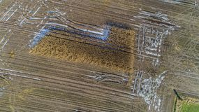Het graangebied wordt beïnvloed door de droogtedroogte in de winter royalty-vrije stock foto's