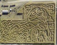 Het graanlabyrint van Idaho met slepen en patronen royalty-vrije stock afbeelding